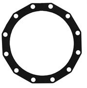 Прокладка резиновая для бойлера 300 NTR/BP.235